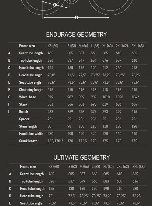 Main differences between Canyon Ultimate and Endurace Road Bikes